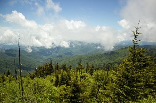 Die Smoky Mountains Teil 1 – Artikel Clingmans Dome