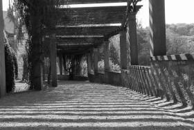 Foto Der Woche – Schwarz Weiss Bild Altensteiner Park in Bad Liebenstein