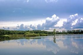 Foto Der Woche – Der Piney Z Lake beim Lafayette Heritage Trail Park in Tallahassee in Florida