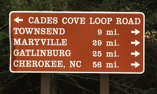 Article: Avoiding Cades Cove Loop Road – What A Nightmare?!