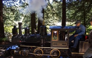 Tilden Steam Train