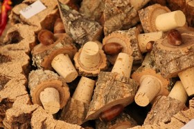 Video: Where does cork come from? Cork in Portugal