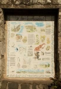 Tiled Panel in Kinnesswood