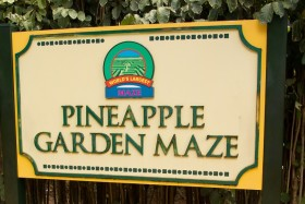 Video: The Dole Plantation Oahu Island Hawaii