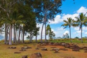 Video: The Kukaniloko Birthing Stones Island of Oahu Hawaii