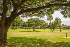 Video: The Kapiolani Park South of Waikiki Beach in Honolulu Oahu