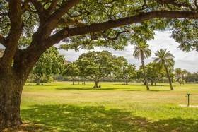 Video: The Kapiolani Park South of Waikiki Beach in Honolulu Oahu