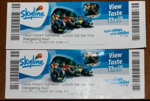 Skyline Gondola entrance tickets
