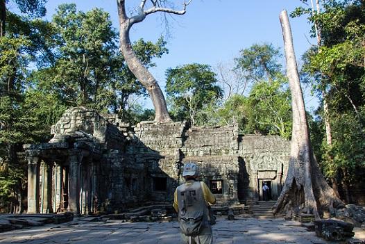 Ta Prohm Temple Tomb Raider Temple Angkor Cambodia