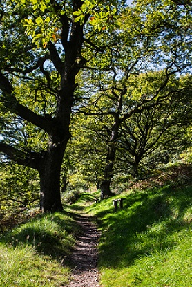 Walking trail around Carreg Cennen Castle